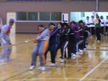2012綱引き大会・女子.jpg