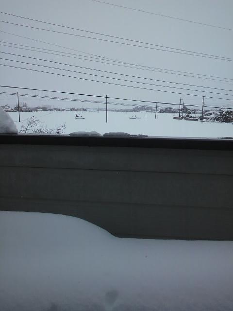 大雪20140215・11時ベランダ.jpg
