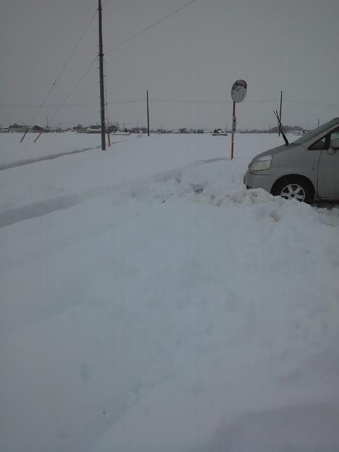 大雪20140215・12時.jpg