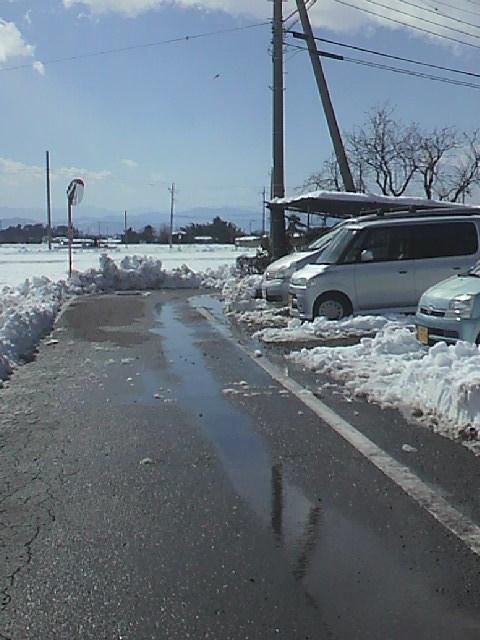 大雪20140216・11時1.jpg