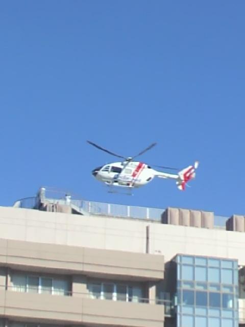 ドクヘリ病院  到着20131121.jpg