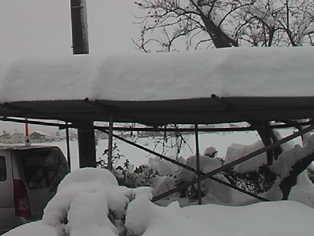 大雪20140215・10時車庫1.jpg