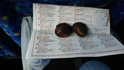 帰り・北斎館焼焼き栗2 - コピー.JPG