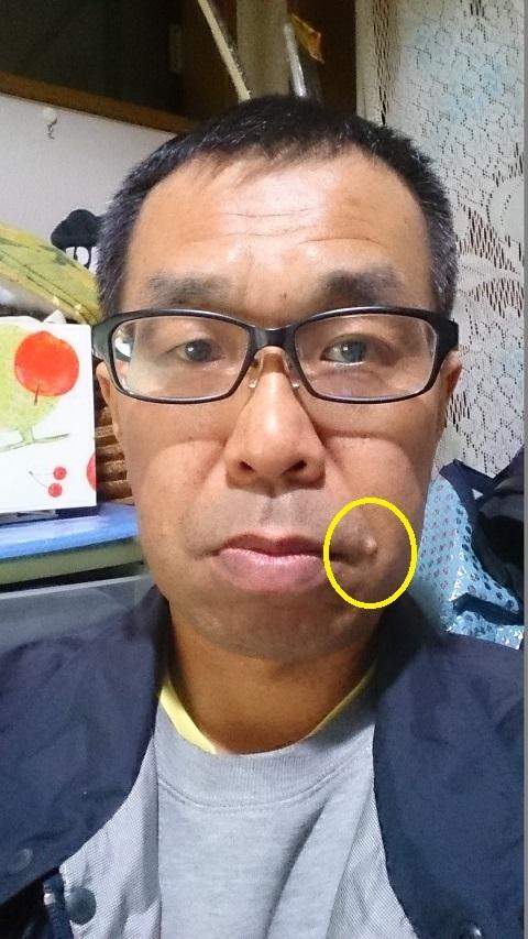 散髪後1・2016.11 - コピー - コピー.JPG