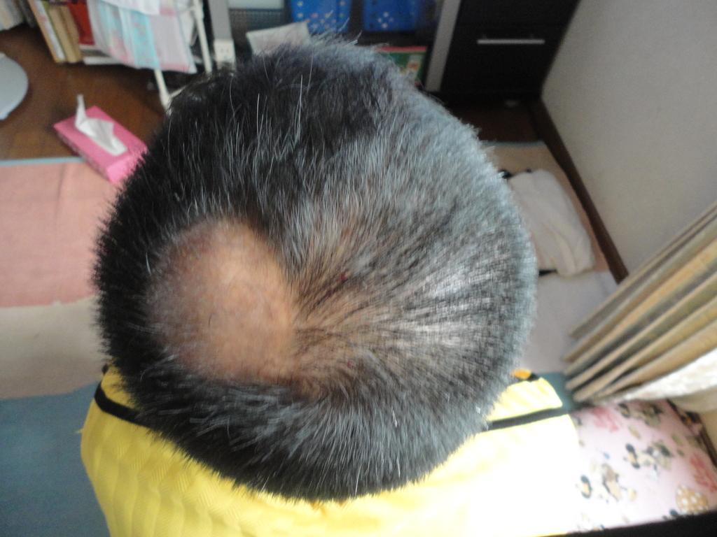 散髪後1.JPG