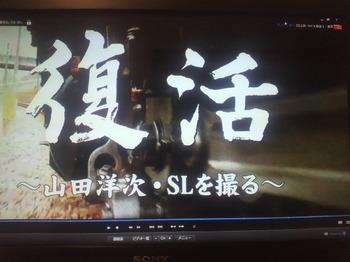 華蔵寺SL・C6120復活.jpg