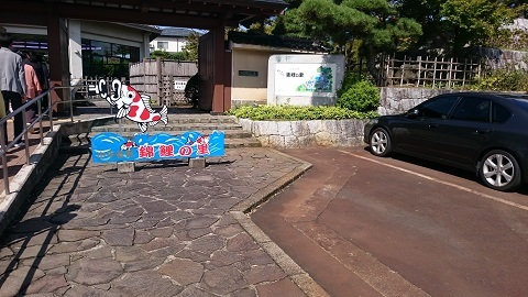 錦鯉の里1.JPG